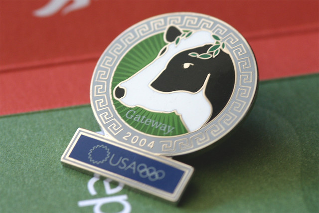 Athens Olympic Pin